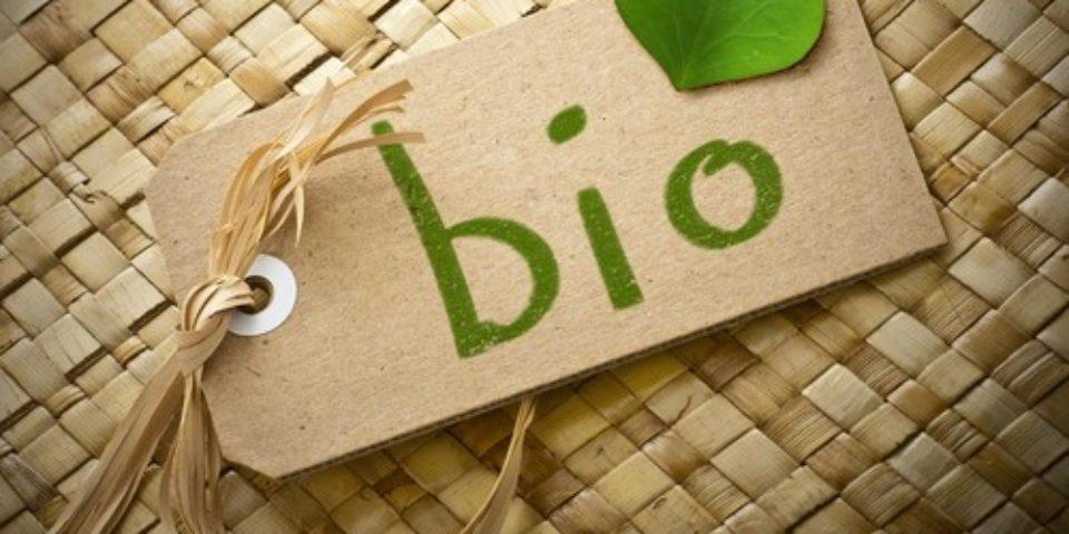 През 2020 година Русия ще има собствен стандарт за биоземеделие
