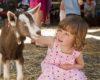 Градска ферма в Москва учи децата как да отглеждат храната си