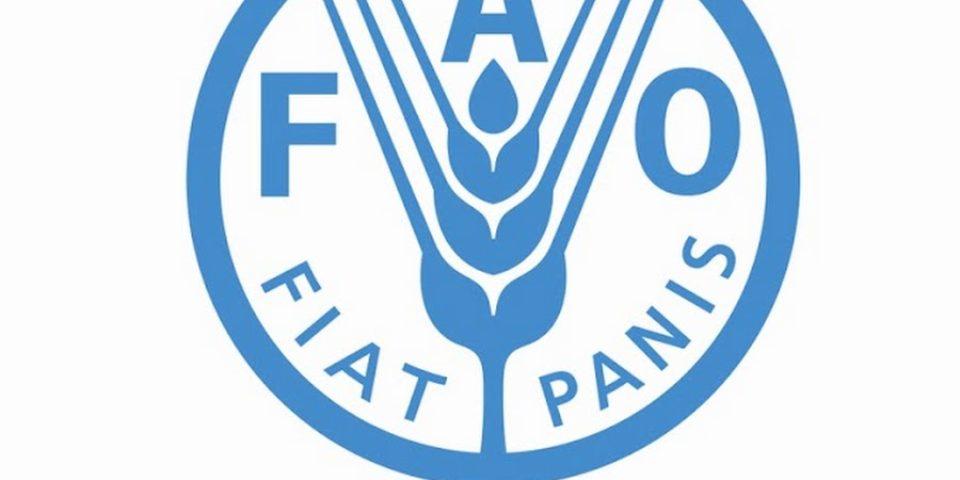 Цените на основните селскостопански продукти и храни отново бележат ръст