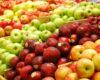 Спад в износа на пресни плодове през първите 11 месеца на миналата година