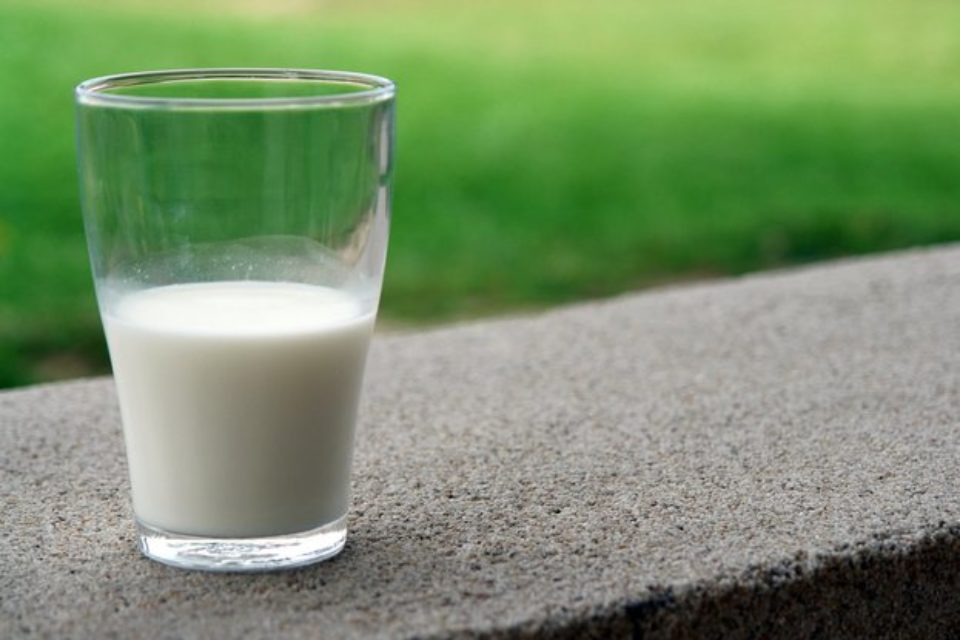 """В """"Държавен вестник"""" е публикувана наредбата, която забранява на производителите на млечни продукти да преработват растителни мазнини"""