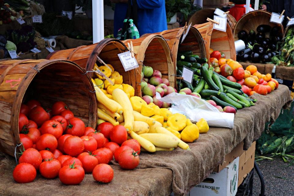Властите в Италия разбиха мащабна схема за измами при производството на биопродукти